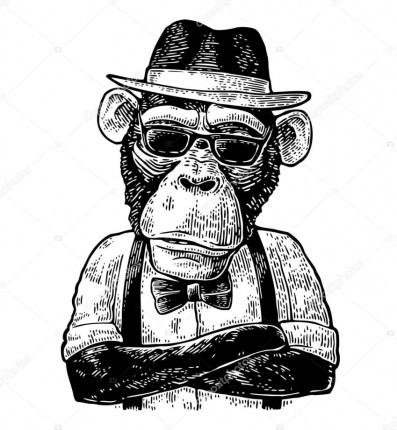 monkey-hipster